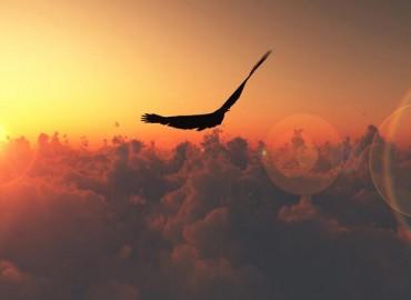 Jaunuolio aukščiausias sielos skrydis