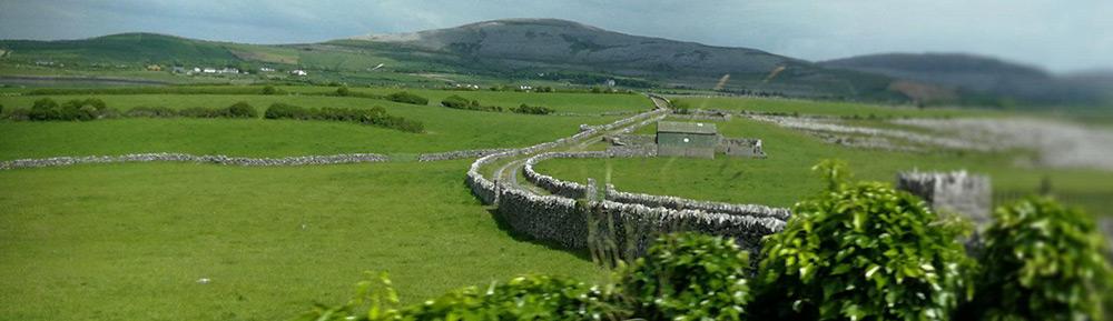 Įspūdžiai iš viešnagės Dubline, arba vidinio išgijimo kelias