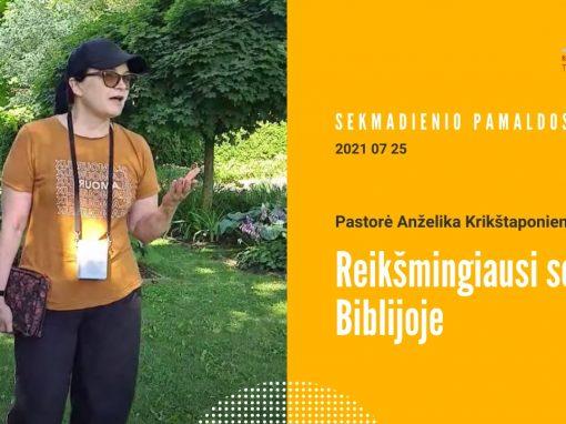 Pamokslas | 2021 07 25 | Reikšmingiausi sodai Biblijoje